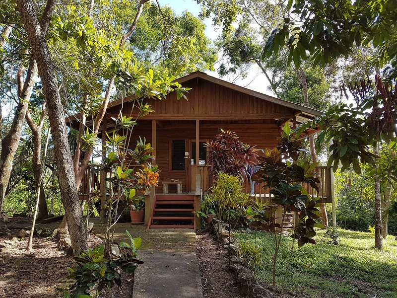 Hidden Haven - Hibiscus dormitory cabana in jungle, holiday rental in San Ignacio