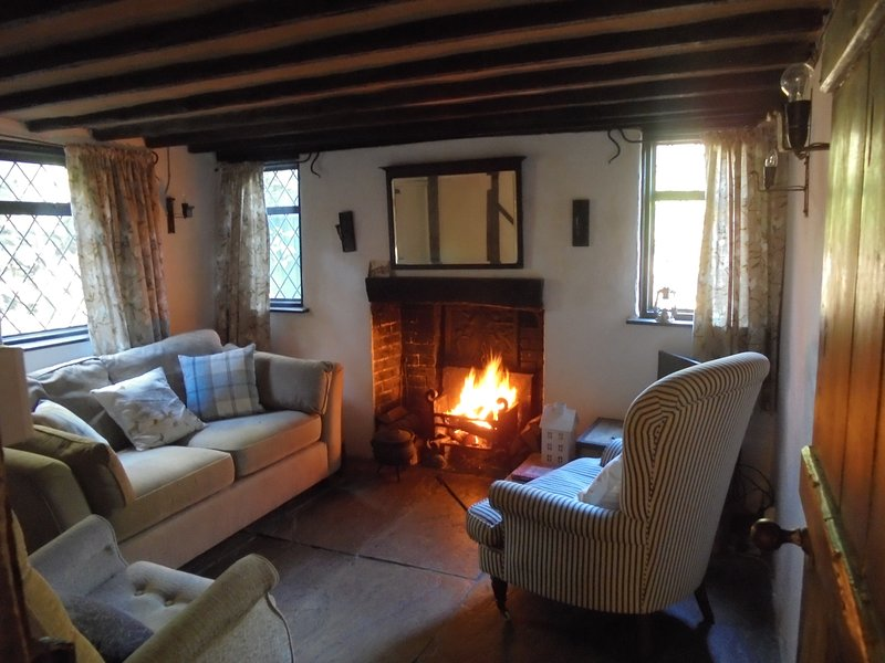 Cosy Point Cottage in Ticehurst, holiday rental in Goudhurst