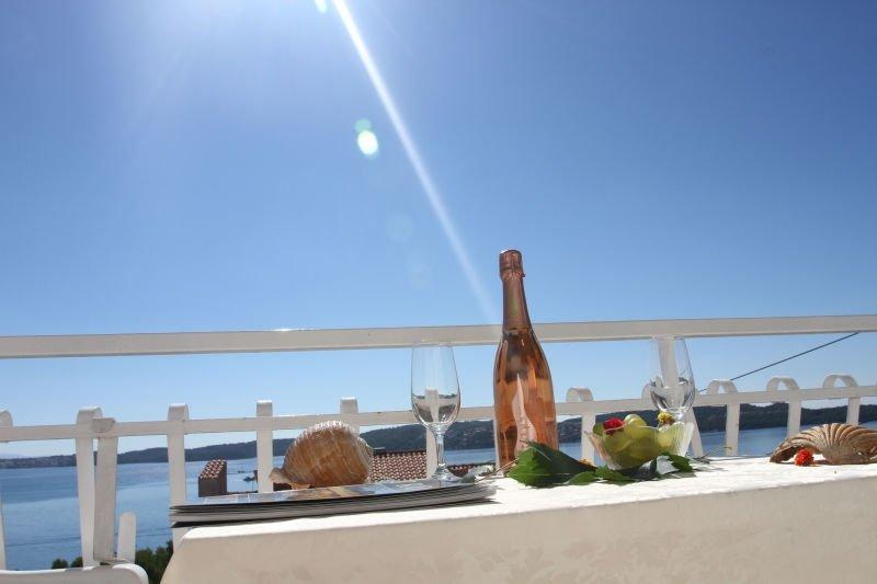 Charming A1(2+2) - Seget Donji, vacation rental in Donji Seget