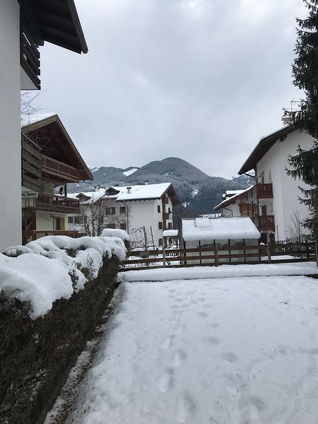 De winter uitzicht vanuit onze tuin
