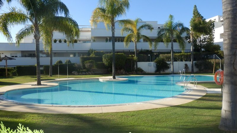 one of the 2 swimming pools of the complex