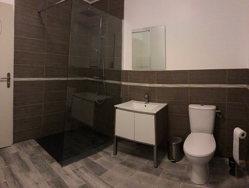 bathroom with toilet, shower, mirror cabinet with a sink and large wall mirror
