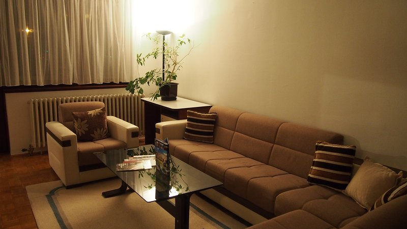 Cozy L&E apartment, holiday rental in Semizovac