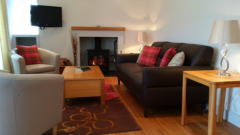 Living area with log burner