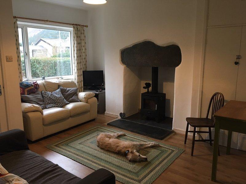 Bwthyn Hwyaden - dog-friendly Snowdonia cottage, vacation rental in Corris