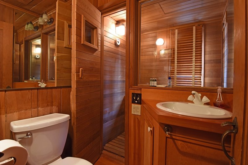 Master bathroom and sauna