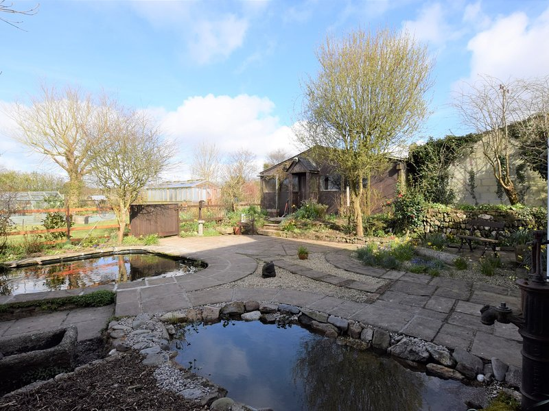 jardín del patio trasero con estanques