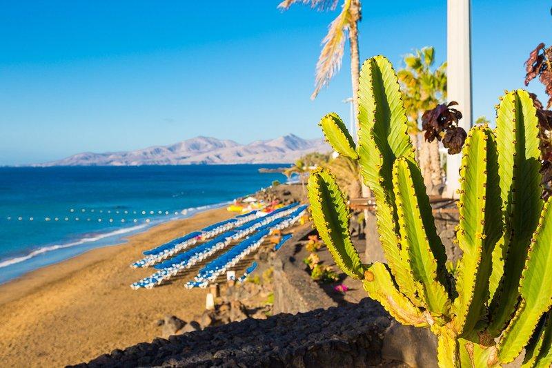 Tome banhos de sol a qualquer número de praias locais intocados