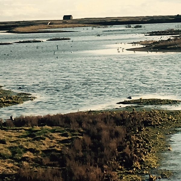 RSPB Nature Reserve, a stone's throw away.