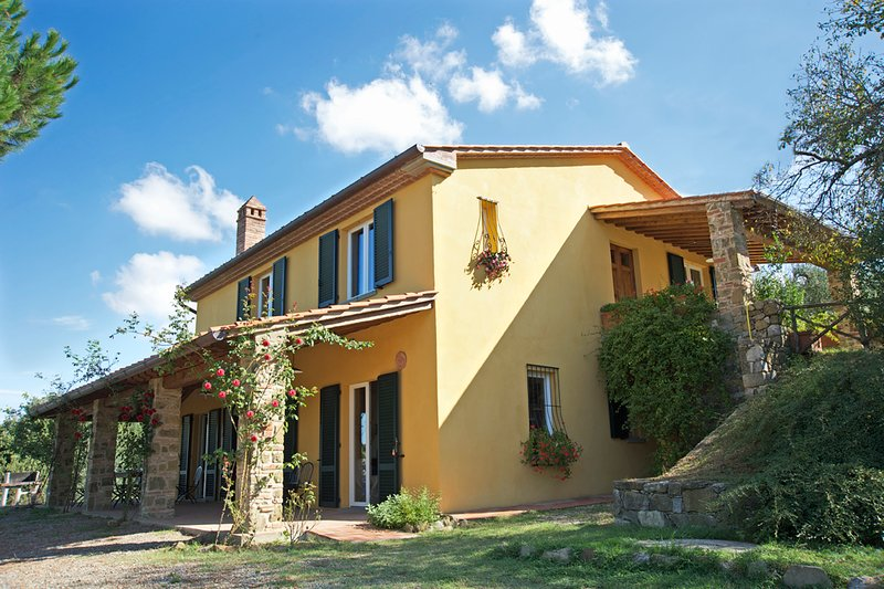 Villa with pool in the heart of Tuscany, holiday rental in Lucignano