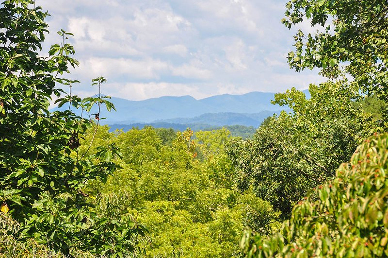 Historic Bidstrup House, holiday rental in Brasstown