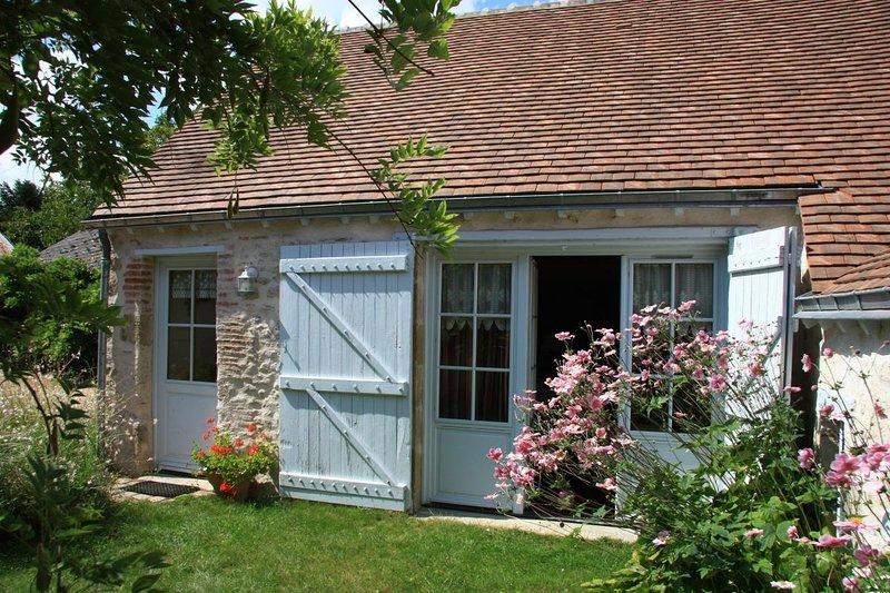 Nice house with terrace & Wifi, location de vacances à Germigny-des-Pres