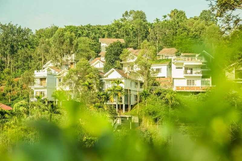 L'arbre jacquier au hameau a 08 villas d'une chambre double, face à pic Chembra!