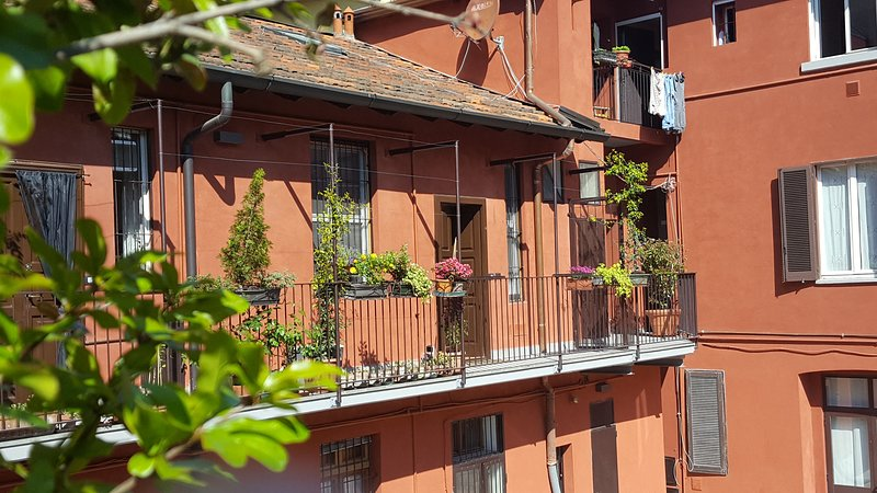 the outside of the apartment, full of growing plants and flowers/l' esterno dell' appartamento con t