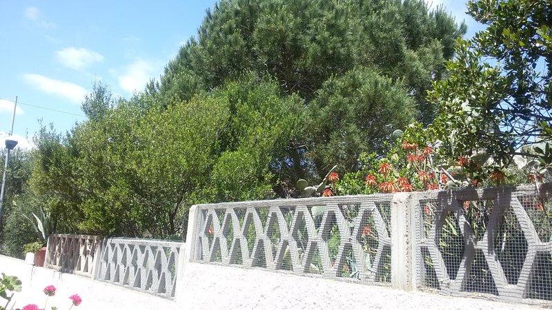 Accogliente casa, vacation rental in La Maddalena