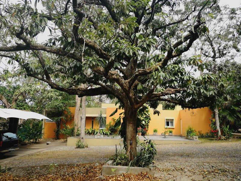 Fachada de casa, frente a un hermoso arbol de Mamey
