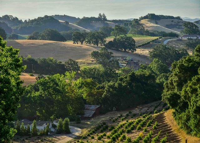 Orchard Hill Farm--Elegant Comfort in Desirable West Side Paso Robles, location de vacances à Lake Nacimiento