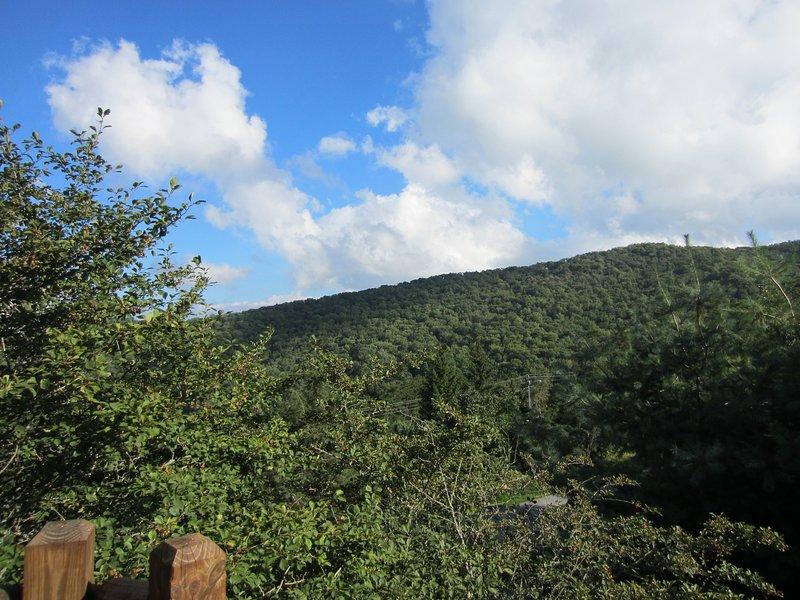 Mountain Delight Multi-Mile View