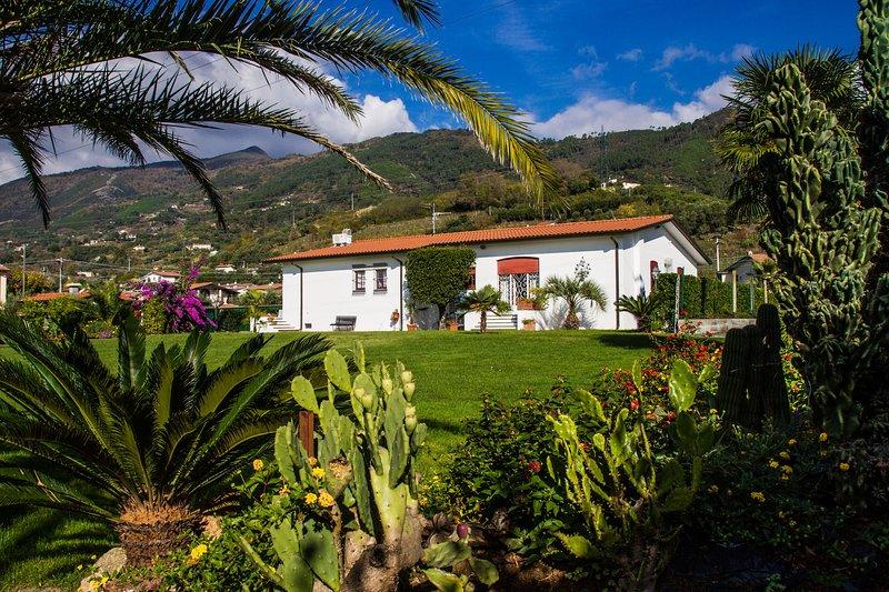 Villa Pergolone, holiday rental in Ripa-Pozzi-Querceta-Ponterosso