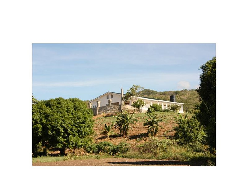 Jenny's Retreat, YALLAHS, holiday rental in Saint Thomas Parish