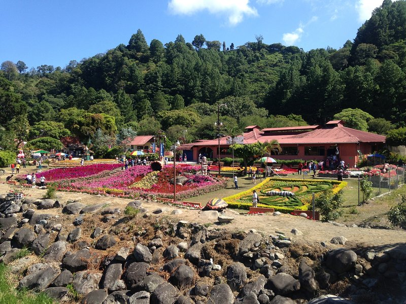 Boquete hosts the annual Flower Festival at the feria grounds right here in town.
