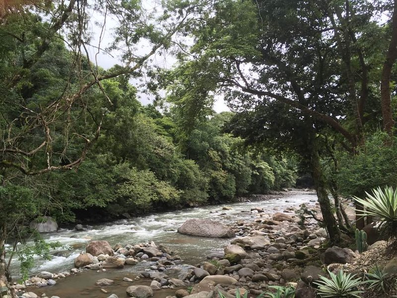 Rio Encantado is a local nature reserve 15 minutes from Casa Cielo. Hiking, river or pool swimming.