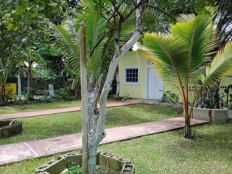 Vista dall'interno della casa al giardino accanto.
