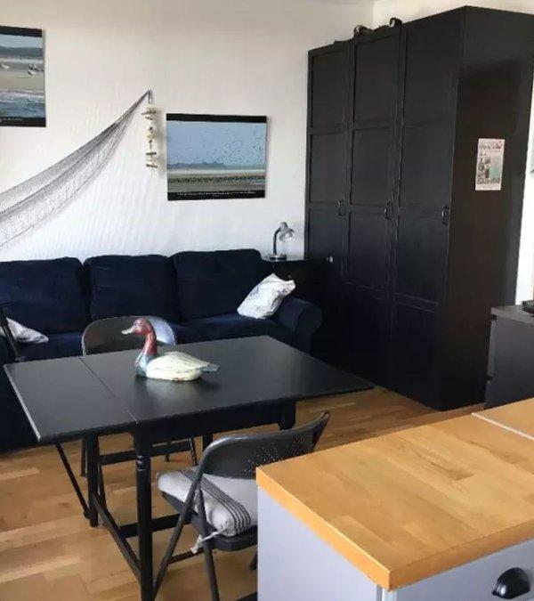 main room and sofa-bed