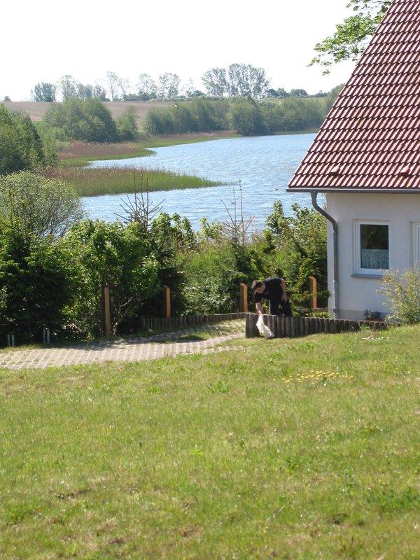 Overlooking the Krebssee