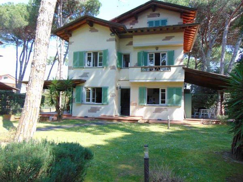 Villa Luce 15, holiday rental in Pietrasanta