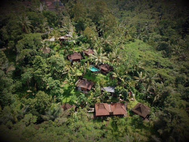 Iconic Valley View Wooden Villa at DD Jungle Ubud Villa, holiday rental in Ubud