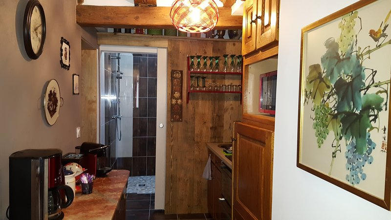 La Venitienne appartement **** avec 2 chambres 4 personnes accès SPA gratuit, holiday rental in Ribeauville
