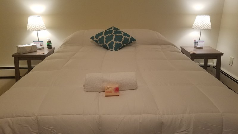 Serene room Sanctuary/ 20 min from New York, Ferienwohnung in Elizabeth