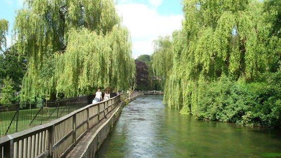 El río Itchen corre más allá del final de la calle de la universidad
