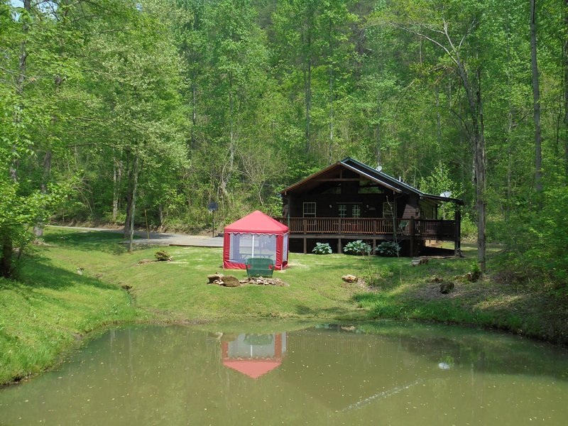 6.5 Acres with fishing pond, firepit and screen picnic table