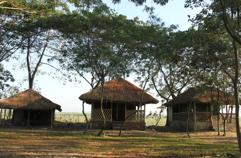 Dhansiri EcoCamp -  Hut Tent 103, holiday rental in Golaghat District