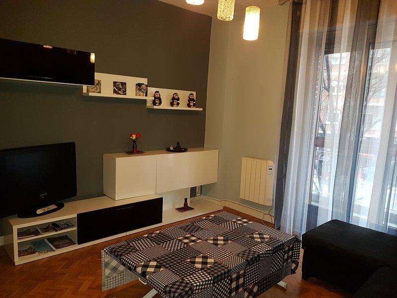 Apartamentos Avenida de la paz con Wi-Fi   OFERTA, holiday rental in Logrono