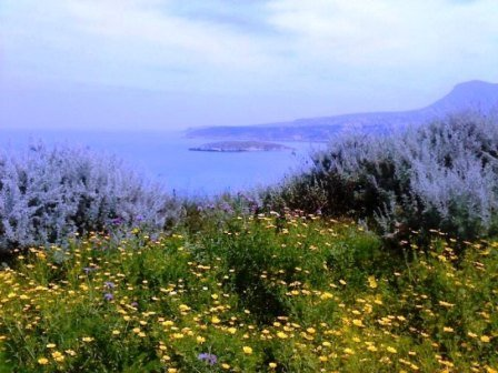 вид на море около посёлка