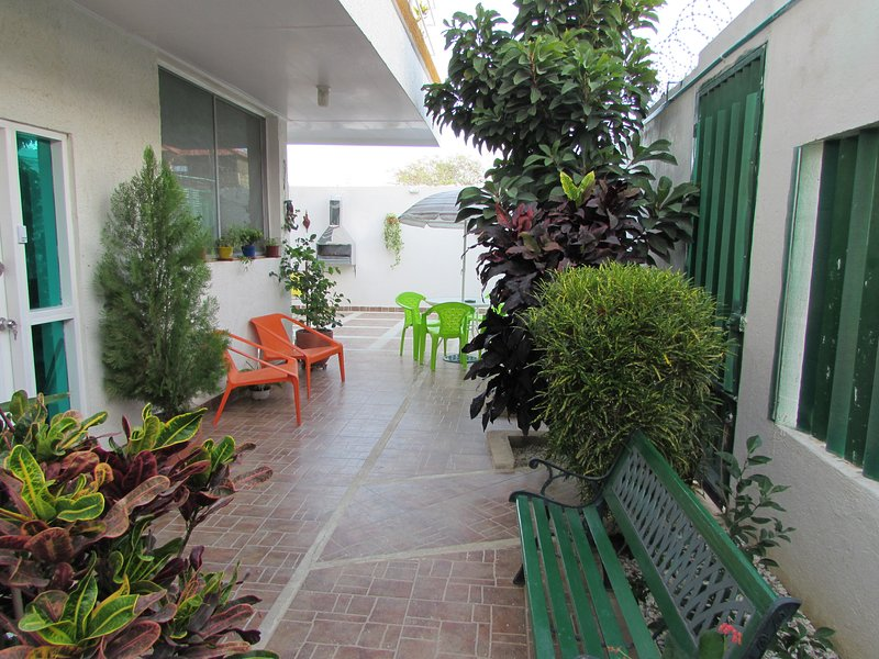 Patio and gardens
