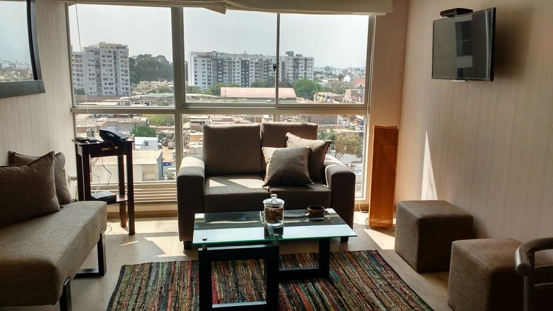 Living room and its view