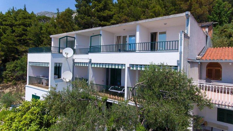 One bedroom apartment Brela, Makarska (A-11687-a), vacation rental in Brela