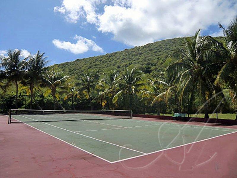 El complejo Villa Madeleine cuenta con tenis en el terreno