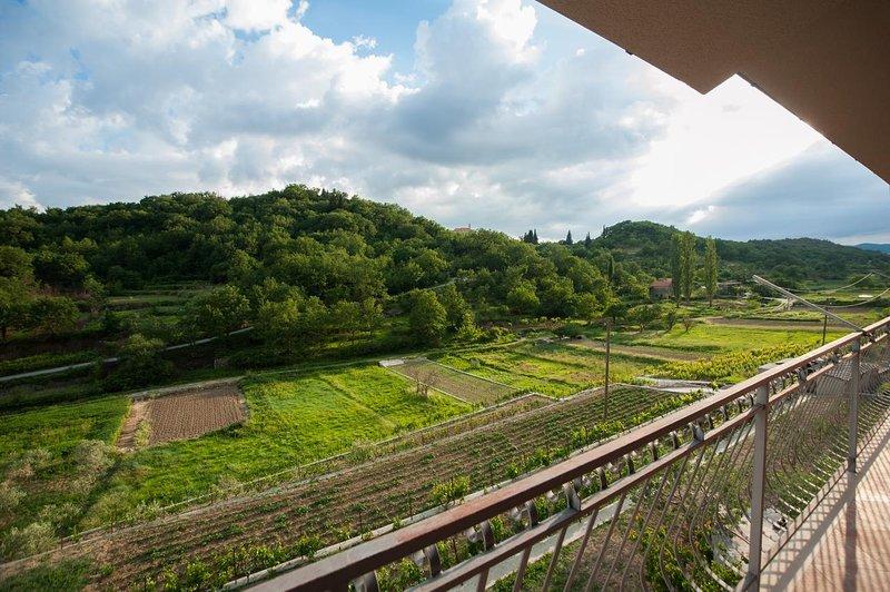 Balcony 1 View