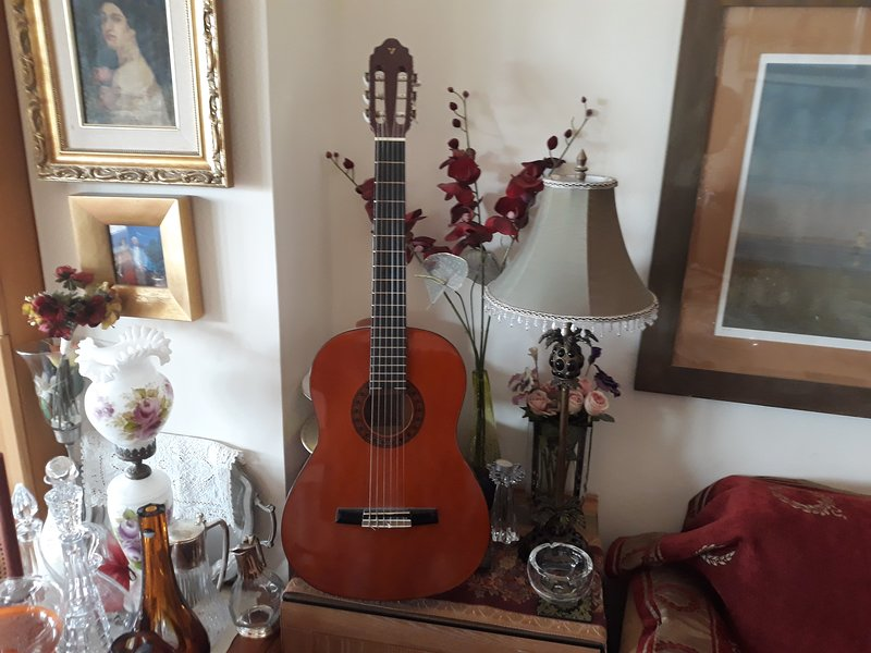 The famous 'Valencia' classical guitar (Guitarras marca Valencia) free for use on demand