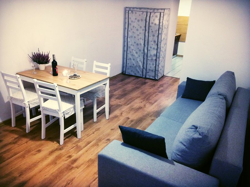 SILVER APARTMENT- 10min to Rynek (Market Square)!, vacation rental in Wroclaw