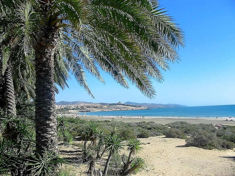Bungalow con encanto, junto al mar, a 100 m playa, con gran terraza 25 m. WIFI, vacation rental in Costa Calma