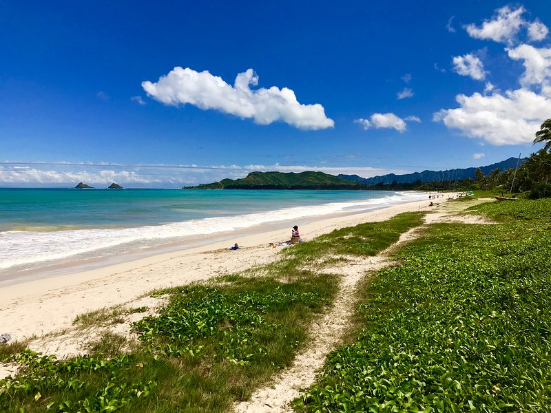 Just a 3 to 5min walk down the street to beautiful scheduled Kailua Beach.
