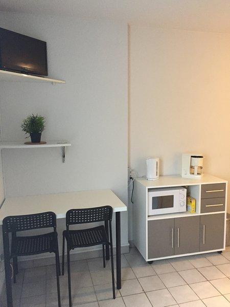 COQUET STUDIO A LOUER -GRENOBLE GARE, vacation rental in Grenoble