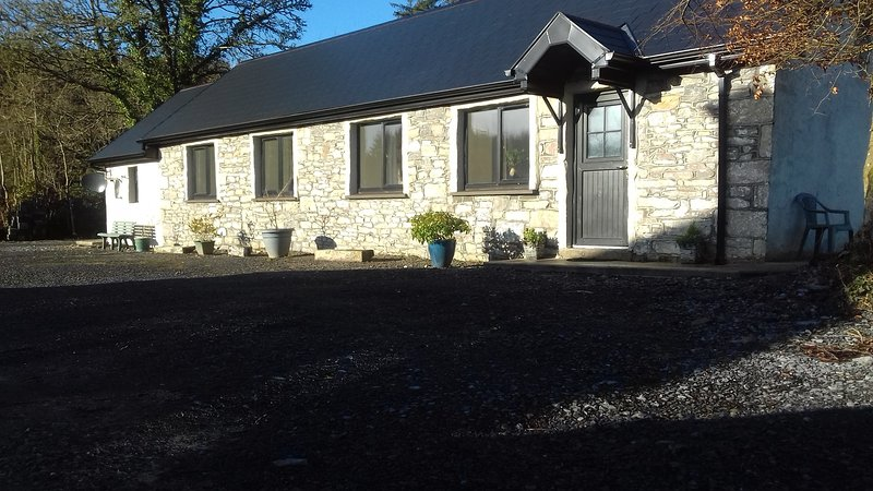 Ash Lodge. Leitrim Village. 4 stars luxury self catering. 3 bedrooms ensuite., vacation rental in Dromod