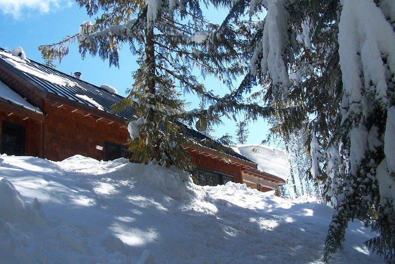 Marshall Cabin-Marshall Cabin in Winter